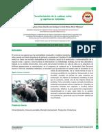 3866-Texto del artículo-6450-1-10-20181108.pdf