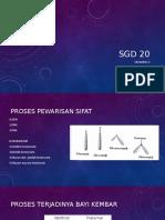 SGD 20 SKENARIO 3 (3)