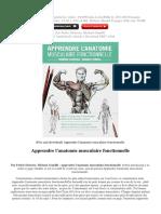 apprendre-l-anatomie-musculaire-fonctionnelle