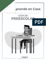 ACTIVIDADES EN CASA PREESCOLAR