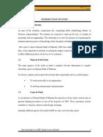 Internship Report, NBP