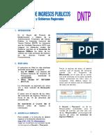 Manual_IIP