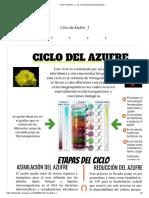 Ciclo de Azufre _1 - by Camilo Barinas [Infographic]