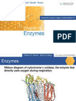 Enzymes_chapter23