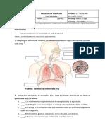 5A evaluacion respiratorio
