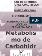 induccion metabolismo