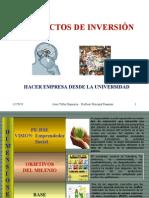 Proyectos de Inversion rial 1193667626146423 2