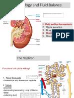 RenalPhysiology.pdf