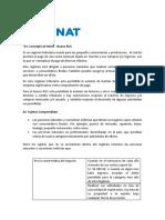 ICFN - Sesión 2 - REGIMENTRIBUTARIO_RUS Lectura complementaria
