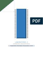 Laboratorio 2_Orlando Delepiani_Frangelys Abraham.pdf