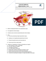 FT_CicloMenstrual_RegulaçaoHormonal.pdf