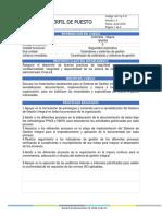 administrador de bases de datos y presupuestos  - Formato Perfil - Colombia - Niquía.pdf