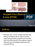 320597465-ppok