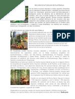 RECURSOS NATURALES DE GUATEMALA1.docx