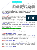 7 TAÇAS DA IRA DE DEUS 02.docx