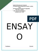 EnsayoPRFYsbelf.docx