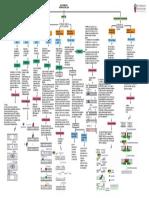 reparacion del ADN diagrama.pdf