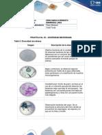 Componente Práctico Biologia_ Harold Manrique