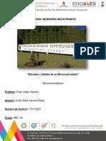 Herrera Pérez Víctor Adriel - Entradas y Salidas de un Microcontrolador.pdf