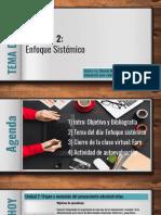 Filminas Enfoques de sistemas (para imprimir).pdf