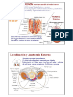El Riñón - Presentación.pdf