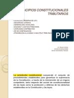 PrincipiosConstitucionalesTributarios (2)