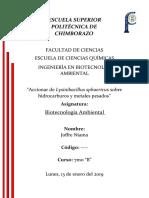 Accionar de Lysinibacillus Sphaericus
