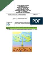 1 guías biología 701 a 704  Iván Lara 13 al 17 abril.pdf