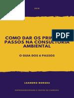 GUIA DOS 6 PASSOS_CONSULTORIA AMBIENTAL