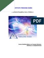 01 - Anatomia Energética - Abordagem completa