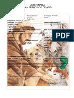 historia-clinica-veterinaria-sanfrancisco-de-asis (3).docx