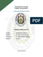 TRABAJO PRACTICO No 1 GENETICA.docx