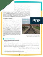 pdf de actividad del 5 de mayo