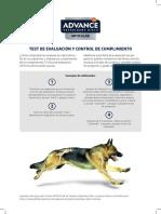 Test de Movilidad perro