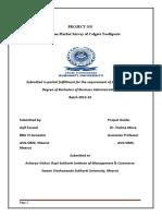new project report on coalgate mba