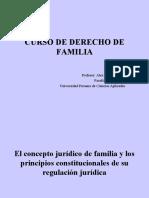curso-de-derecho-de-familia-