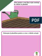 Ridichea uriasa - Plansete pentru modelajul cu plastilina.pdf