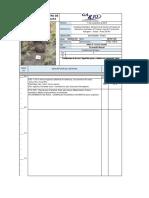 DESCRIPCION DE CALICATAS  SAN ROMAN - PUNO 2.pdf