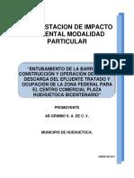 MANIFESTACION DE IMPACTO .pdf