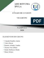 Slide VII Grupo