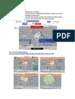 more info.pdf
