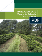 Manejo de Cafezais Em Produção