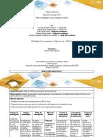 Anexo 3 Formato de entrega - Paso 4 (2) (1).docx