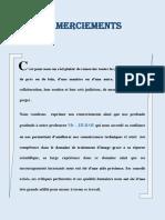 Systeme de la Reconnaissance des des plaques d'immatriculation marocaines