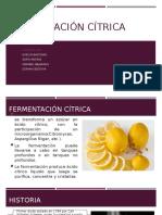 Fermentación-cítrica