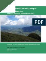 1548402043-Meio Ambiente em Mozambique 2013.pdf