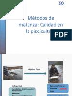 PDF TRADUCIO