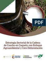 PUBLICACIÓN Visión Amazonía Caucho Caquetá.pdf
