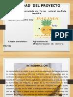Presentación  DEL PLAN DE NEGOCIOS........ PALIMA.pptx