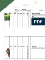 Informe 01.Flora